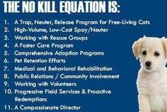 Animal Services a NO KILL Shelter!!!