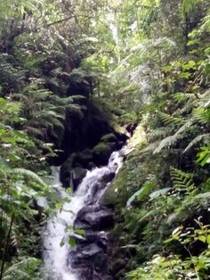 Curug Cipanyi level 7