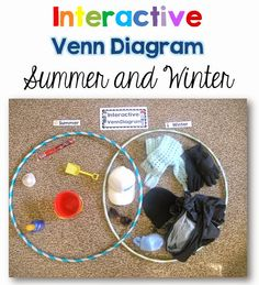 Interactive Venn using two large hoops and objects or vocab cards.