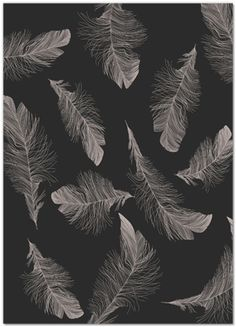 love this invite background. #feathers