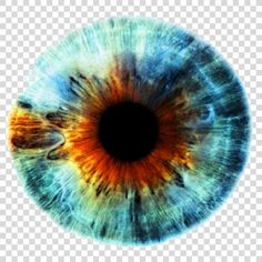 Iris Human Eye Eye Color Eyes Png Watercolor Cartoon Flower Frame Heart Human Eye Eye Color Iris