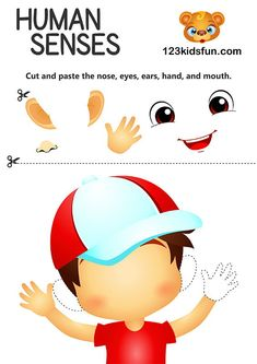 Teach Kids about the Human Body - 5 senses: touch, see, smell, taste, hear. Science activities for Kids. Body Parts Preschool Activities, All About Me Activities For Preschoolers, Five Senses Preschool, 5 Senses Activities, All About Me Preschool, Body Preschool, Toddler Learning Activities, Teaching Kids, 5 Senses Craft