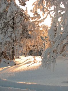Pyha, Finnish Lapland by Danny van Lieshout, via Flickr