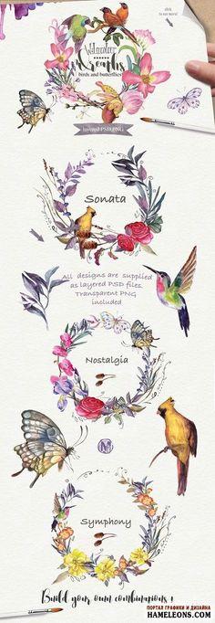 Акварельные цветочные венки, птицы, бабочки - исходники для Фотошоп | Watercolor floral wreaths