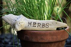 'Herbs' burn engraved into a natural piece of Driftwood. I collect all Driftwood pieces used, each possessing a unique beauty & magic all their own! Makes a lovely gift for any gardener or hern enthusiast. Witchy Garden, Beauty Magic, Garden Signs, Beach Signs, Nature Decor, Herb Garden, Driftwood, Marker, Wedding Decorations