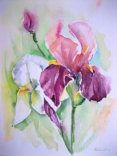 anelest AND painting - Bing Images Iris Painting, Acrylic Painting Flowers, Watercolour Painting, Flower Paintings, Watercolor Projects, Watercolor Techniques, Iris Art, Paint Cards, Iris Flowers