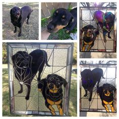 Labrador and Rottweiler (Emma & Stone) Original Portraits by Nancy Smith. Stained Glass by Nancy on FB