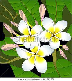 Plumeria (Frangipani) / stained glass window Hawaii, Bali (Indonesia), Shri-Lanka Tropical Necklace Flowers. Vector Illustration