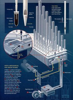 The Inner Workings Of A Pipe Organ And How It Works,