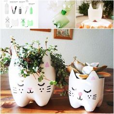 DIY hanging cat planter from plastic bottles PATTERN