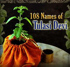 108 Names of Tulasi devi - ISKCON Desire Tree - Devotee Network