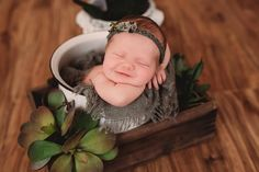 Newborn girl photography ideas with succulents