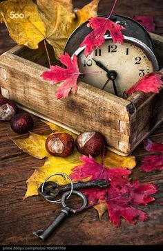 Add foliage nuts old clock to weathered wood box for easy decor Diy Pallet Projects Add Box Clock Decor Easy foliage Herbs Herbst nuts weathered Wood Autumn Day, Autumn Leaves, Diy Autumn, Autumn Harvest, October Fall, Hello October, Time For Change, Old Clocks, Weathered Wood