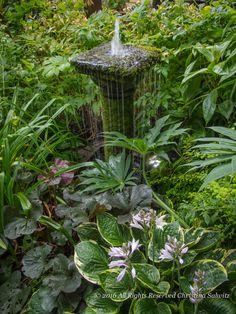 A Garden Editors 25 Gardening Insights