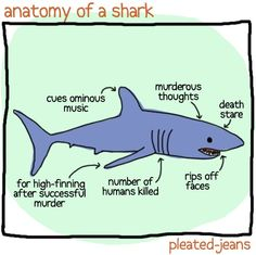 Unscientific Anatomy of Sea Life #funny @Hillary Hiler  teach your kids this! (for your final #bonuspoints )
