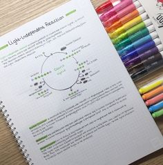 """2,153 Me gusta, 18 comentarios - Studygram Account (@study_to_success) en Instagram: """"I need more whitelines don't think I can go back to non-scannable paper ! #studyblog…"""""""
