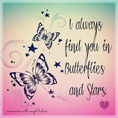 I planted butterfly plants in your garden - and I'll add more this summer. I think of them as a message from you - letting me know it will be ok.