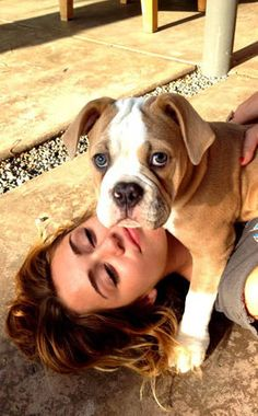 Miley Cyrus from Celebrity Pets: Miley Cyrus' Puppy, Taylor Swift's Cat & More  Look at those puppy-dog eyes. The actress/singer loves posing for a picture with Ziggy, who she gave as a present to her BF Liam Hemsworth for his birthday. Talk about puppy love!