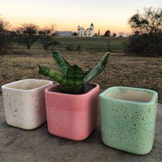 De a poquito vamos sumando cosas lindas a Alapapaia ❤️🌷. Hoy llegaron estas macetas de cerámica Ana de @elidarosa_ok que son ideales para…