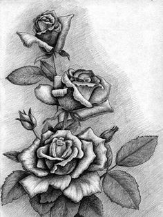 Rezultat slika za kako nacrtati ruzu na zidu Shading Drawing, Pencil Shading, Drawing Sketches, Pencil Drawings, Painting & Drawing, Drawing Pin, Flower Images, Flower Art, Tattoo Drawings