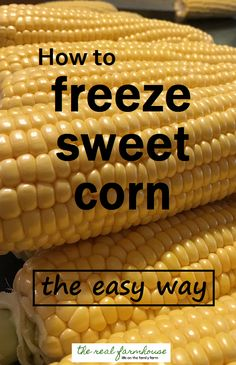 How to freeze sweet corn the easy way- fast, easy, and so much better than store bought frozen corn Freezing Fresh Corn, Freezing Vegetables, Canning Vegetables, Frozen Vegetables, Freezing Fruit, Freezing Tomatoes, Recipe For Freezing Sweet Corn, Frozen Meals, Frozen Fruit