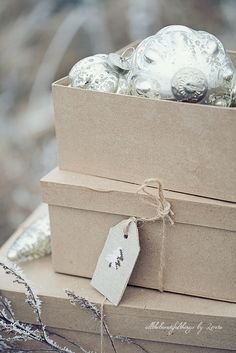Kraft Boxes and silver mercury ornaments