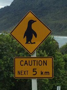 Strassenschilder in Neuseeland