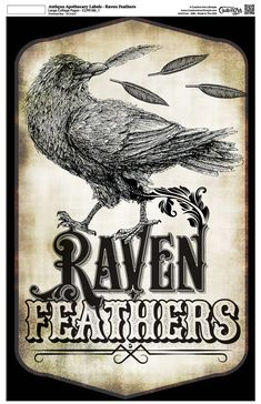 """Antique Apothecary Label - Collage Paper - Raven Feathers - 10.5"""" x 16.25"""" Halloween Prints, Halloween Pictures, Halloween Art, Holidays Halloween, Vintage Halloween, Halloween Decorations, Halloween Printable, Halloween Stuff, Happy Halloween"""