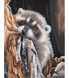 Dimensions 11''x14'' Paint By Number Kit-Daydreaming Raccoon