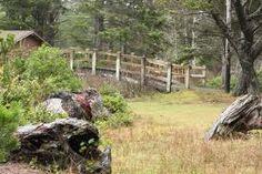 Fogarty Creek State Recreation Area - Oregon