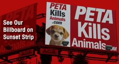 """has obtained PETA's """"Animal Record"""" filings for every year since 1998 from the Virginia Department of Agriculture and Consumer Services. Members of the public can see these documents at www.PETAKillsAnimals.com."""