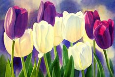Purple And White Tulips Painting by Sharon Freeman - Purple And White Tulips Fine Art Prints and Posters for Sale