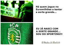 A maior sorte é ser-se Sporting Clube de Portugal! #Sporting #SportingClubePortugal #sportingfans Best Club, Sports, Scp, Birdwatching, Vivo, Sorting, Soccer, Happy, Amor