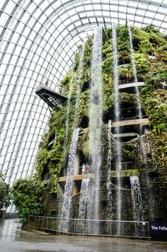 """""""Cloud Forest"""" la serra temperata con l'altissima cascata artificiale"""