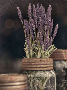 ** Ana Rosa: Lavender in a Ball Mason jar with rusted lid.