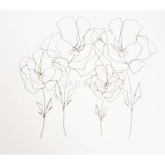 ORIGINAL Botanical Drawing; Minimalist Flower Drawing; Abstract Flower... (195 ILS) via Polyvore featuring home, home decor, wall art, flower wall art, blume, flower drawing, paper wall art and flower stem