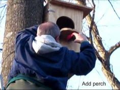 How to: Barred Owl nest box. Definitely doing this!