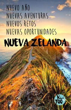 New Zealand Travel Inspiration - Nugget Point Lighthouse, South Island of New Zealand New Zealand Adventure, New Zealand Travel, Wildlife Photography, Travel Photography, Travel Goals, Travel Tips, South Island, Travel With Kids, Adventure Travel