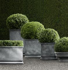 zinc footed planters with green .. love this for the porch - clean and simple lines