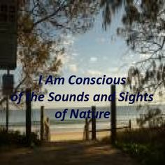 Eckhart Tolle teaches us that to gain consciousness we have to tune into nature - the sights and sounds. This can be a centering activity. Eckhart Tolle, Sight & Sound, Self Talk, Self Confidence, Self Esteem, Integrity, Consciousness, Gain, Affirmations