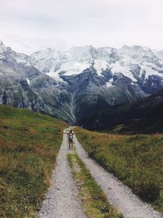 hike the beautiful trails of gimmelwald in the swiss alps