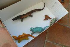 Museo en una caja