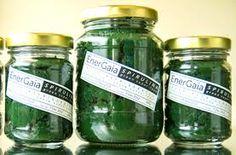 How to Preserve Spirulina? - http://www.organicfarmingblog.com/preserve-spirulina/