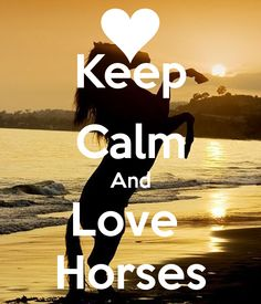 KEEP CALM AND LOVE HORSES. Another original poster design created with the Keep Calm-o-matic. Buy this design or create your own original Keep Calm design now. Funny Horses, Cute Horses, Horse Love, Beautiful Horses, Keep Calm Posters, Keep Calm Quotes, Inspirational Horse Quotes, Motivational Sayings, Horse Riding Quotes