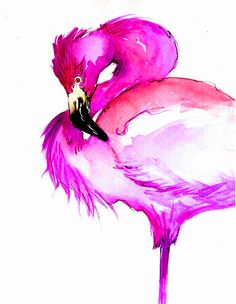 Flamingo_CrystinaCastiglione1.jpg