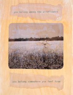 you belong among the wild flowers...you belong somewhere you feel free...tom petty
