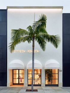 Tomas Maier Talks About Bottega Venetas New Beverly Hills Maison and Whats Next for New York and Tokyo
