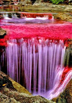 The Rio Caño Cristales - most colorful river (caused by algae and moss seen through the water), Colombia. Beautiful Waterfalls, Beautiful Landscapes, Places To Travel, Places To See, Travel Destinations, Places Around The World, Around The Worlds, Beautiful World, Beautiful Places