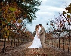 Imagine your wedding on beautiful Hill Country vinyard!