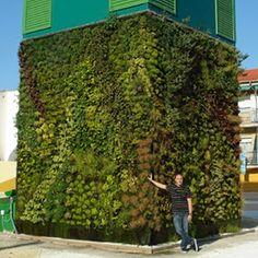 Urbanarbolismo » Jardines verticales Urbanarbolismo.